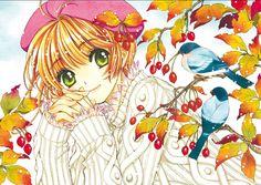 Sakura Kinomoto/Image Gallery