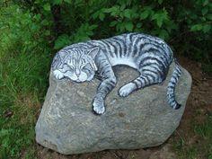 Kayanın üstünde uyuyan kedi taş boyama