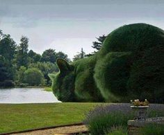 This is so cool!!! I had to share it on my cool cat stuff board. I love the way the trees look like a sleeping cat! <3 <3