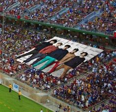 One Direction fandom. you're doing it right