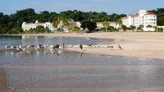 PANAMA | Veracruz - InterContinental Playa Bonita
