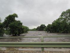 Dando Disaster. A story about the 2012 floods in Kruger National Park.