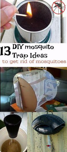 9 Best Indoor mosquito control images