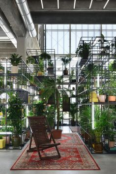 Rashid Johnson at Garage Museum of Contemporary Art in Moscow