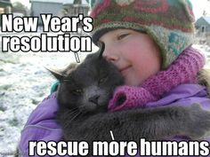 Rescue a shelter animal.