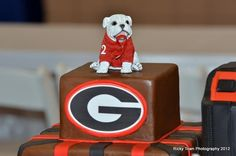 Georgia bulldogs groom's cake