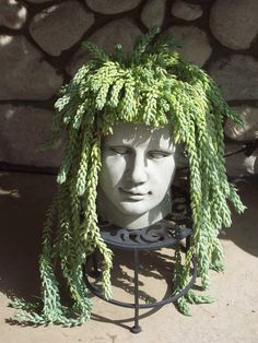 Changing Your Garden Appearance with Stone Head Planter - Unique Balcony & Garden Decoration and Easy DIY Ideas Cacti And Succulents, Planting Succulents, Planting Flowers, Balcony Garden, Garden Planters, Stone Planters, Small Gardens, Outdoor Gardens, Art Visage