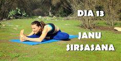 Elena Malova: Día 13 - Janu Sirsasana Yoga Challenge #malovayogachallenge1