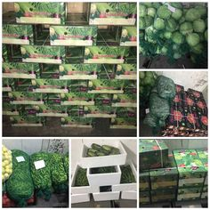21 Best Fresh Fruits & Vegetables Container For Export images in