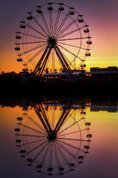 ✮ The Big Easy is the ferris wheel at Six Flags New Olreans as it currently stands