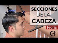 División Capilar de la Cabeza | Secciones de la Cabeza ➤ Peines de Corte y Pinzas ✦ Teoría - YouTube