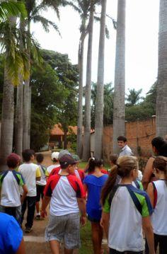Blog da Turminha: Chácara Sapucaia