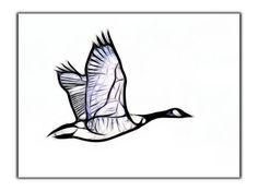 goose logo - Google Search