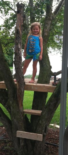 I would be settled with this simple platform. I would be settled with this simple platform. Kids Outdoor Play, Backyard For Kids, Diy For Kids, Family Tree Quilt, Simple Tree House, Tree House Plans, Building A Treehouse, Tree House Designs, Backyard Playground