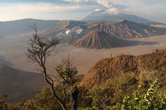Three craters of Bromo (fuming), Batok and Kursi within huge caldera surrounded by Sand Sea, with Gunung Semeru in background