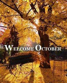 My favorite season! I love fall.