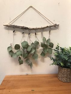 100 driftwood dried flowers or herbs rack ideas in 2020 dried flowers herb rack driftwood driftwood dried flowers or herbs rack