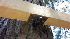 View of custom made steel hardware supporting the middle of the main beam as its bolted to the tree.