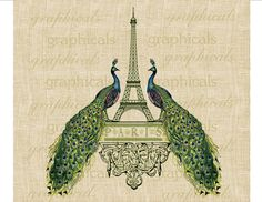 Hey, I found this really awesome Etsy listing at https://www.etsy.com/listing/93848675/paris-eiffel-tower-peacocks-digital