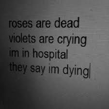 Image result for suicide quotes