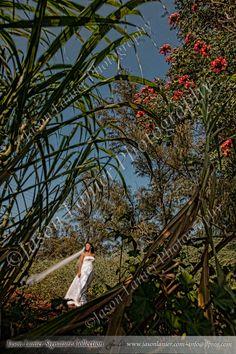 Lost in Paradise in Maui by Jason Lanier.
