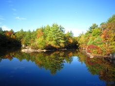 Hidden Lake on the White Trail at Camp #Yawgoog.  A 2014 image by David R. Brierley.