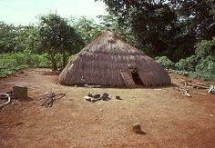 Native hut in jungle clearing, Central African Republic