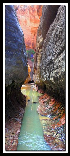 "I need to go there! ""The Subway in Zion National Park is definitely a life lister! It's also a perfect introduction to canyoneering."""