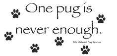 Truer words are have not been spoken. Cheap Dog Food, Pug Rescue, Animal Rescue, Pug Love, I Love Dogs, Pugs For Sale, Pug Art, Cute Dogs Breeds, Animaux