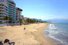 nuevo vallarta beach - Buscar con Google