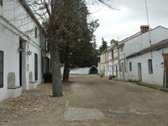 ILLÁN DE VACAS (TOLEDO)  Casas y calle.