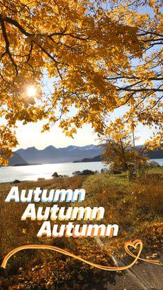 My Story idea, Norway Story Ideas, Norway, Autumn, Mountains, Nature, Travel, Beautiful, Instagram, Naturaleza