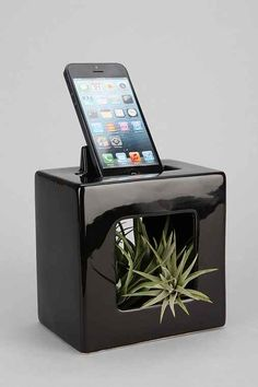 BloomBox Phone Stand