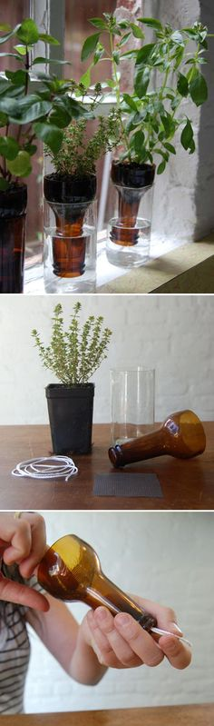 Simple DIY Bottle Garden   Easy DIY Beer Bottle Craft Projects by DIY Ready at www.diyready.com/diy-projects-uses-for-beer-bottles/