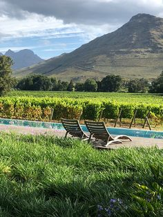 #perfecthideaways #escapetheordinary #maisonfranschhoek #franschhoek #artistshomes #countryside #family #farm #hotlisthideaways #justlaunched #multigenerationalhideaways #photoshoots #rentals #selfcatering #weddings #celebrations #winelands #accommodation #vacationrentals #vacation #holiday #southafrica Orange County Beaches, Rental Property, Santa Monica, In Hollywood, Sun Lounger, Countryside, South Africa, Vacation, Outdoor Decor