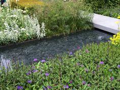 Chelsea Flower Show  - Telegraph garden