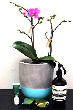 TĀ Skincare Healing Balm #manuka #pawpaw #orchid