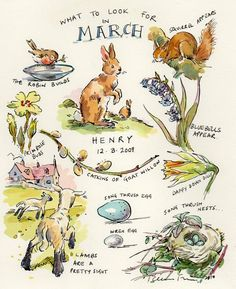 'What to Look for in March' - by Claire Fletcher Artist <> (spring, illustration, springtime) Art And Illustration, Wallpaper Free, March Month, March 6, Nature Journal, Garden Journal, Months In A Year, Art Sketchbook, Beltane