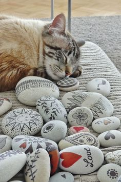 pebbles and cat ... pebbles from Portugal, hand painted by Sabine Ostermann