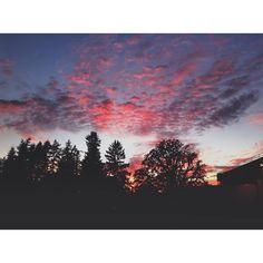 | we thought we lost you | #Oregonexplored #Newberg #ADEC #Oregon #pnw #pnwphotography #pnwonderland #vsco #vscocam #explore #exploring #travel #adventure #adventureout #traveloregon #UpperLeftUSA #LivePNW #VentureOut #pnwcollective #BestOfOregon #greatnorthcollective #wildernessculture #PNWonderland #jj_oregon #oregonnw #sunset by pnwregular