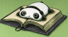 Tare Panda loves books too!