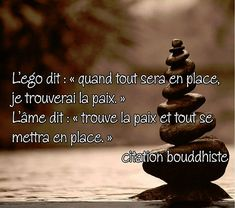 Discover recipes, home ideas, style inspiration and other ideas to try. Zen Quotes, Motivational Quotes For Life, Life Quotes, Inspirational Quotes, Coaching Questions, Learn To Meditate, Quote Citation, Kindness Quotes, Messages