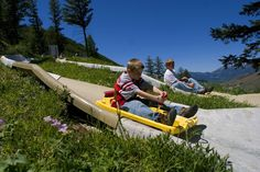 The Alpine Slide at Snow King offers fun for all.