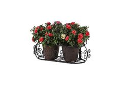 Get French country window boxes for your home. Standard and custom wrought iron window boxes and pottery shelves with old world European styling. Container Plants, Container Gardening, Wrought Iron Window Boxes, Trailing Flowers, Iron Windows, Window Planter Boxes, Antique Iron, Vintage Windows, Custom Windows