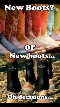 The struggle is real. My horse always gets new boots over me. Horse Boots, My Horse, Horse Love, Horse Tack, Horse Riding, Horse Feed, Horse Halters, Western Riding, Breyer Horses