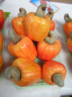 Caju (Port.), Anacardo (Spa.), Cashew (Eng.): although the orange/red part is used as a fruit (specially for juices and sweets), it's the grey part - the nut - that is actually the fruit and the reason why it's known worldwide. Mercado Municipal, São Paulo, Brazil