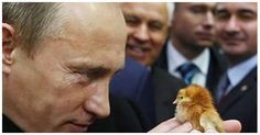 The Russian Govt. has Decided to COMPLETELY BAN the Use of Any & All Genetically Modifie...