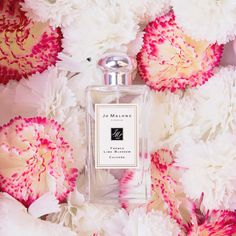 Always luxurious, exquisite and refined. Jo Malone, a long-time signature. Explore the Jo Malone collection at BeautyFresh. https://www.beautyfresh.com/brand/jo-malone #BeautyFreshFave #Beauty #JoMalone #Fragrance