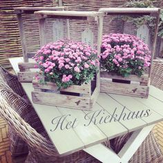 Gaasbakken bij Het Kiekhuus! Like us on Facebook! #hetkiekhuus #styling #flowers