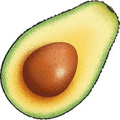 abacateiro desenho - Pesquisa Google